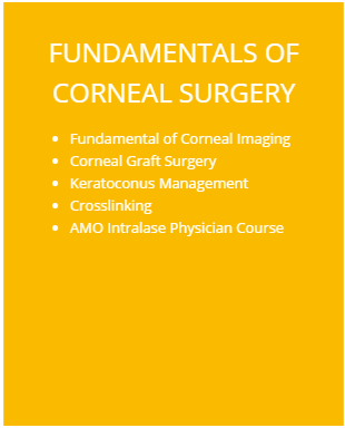 FUNDAMENTALS OF CORNEAL SURGERY Modulo3